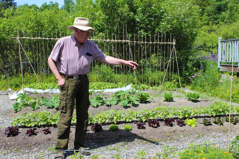 Incredible Edible Milbridge Offers FREE Private Home Garden Tours