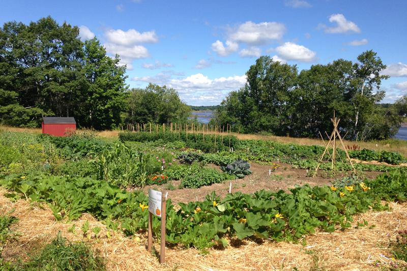 Annual Volunteer Incredible Edible Milbridge Meeting – June 5th!