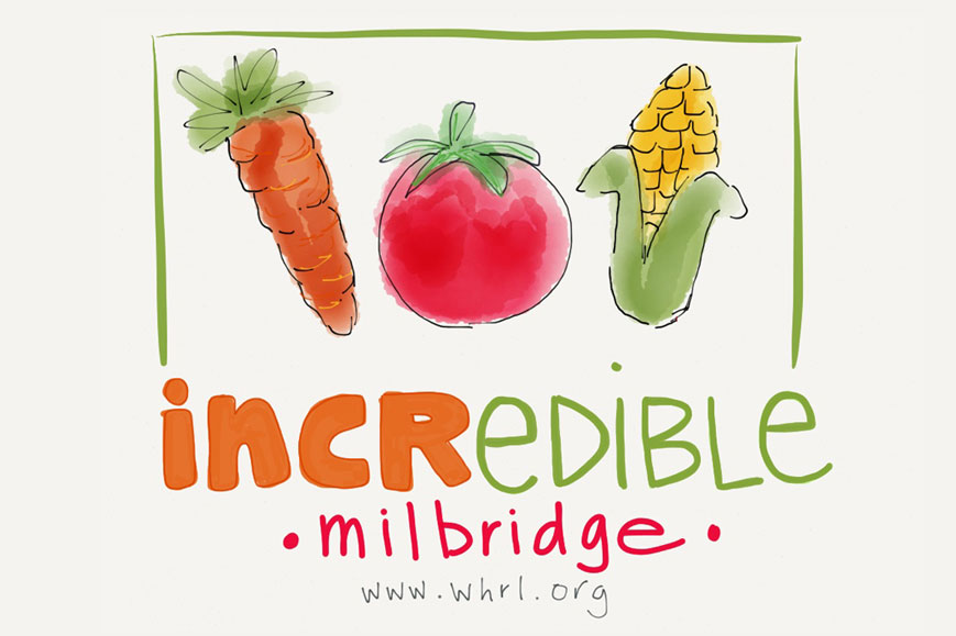 Incredible Edible Milbridge Takes Shape with New Logo