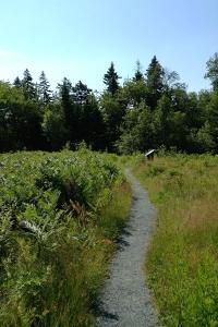 Hollingsworth Trail