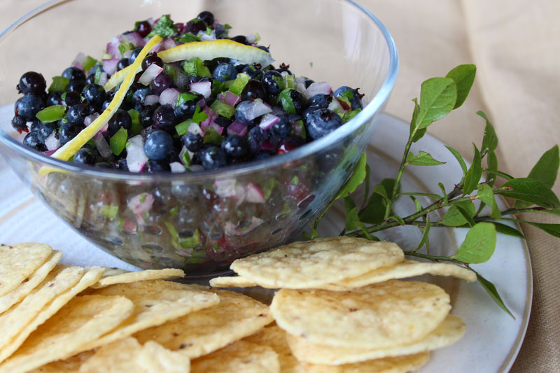 Amazing Wild Blueberry Salsa