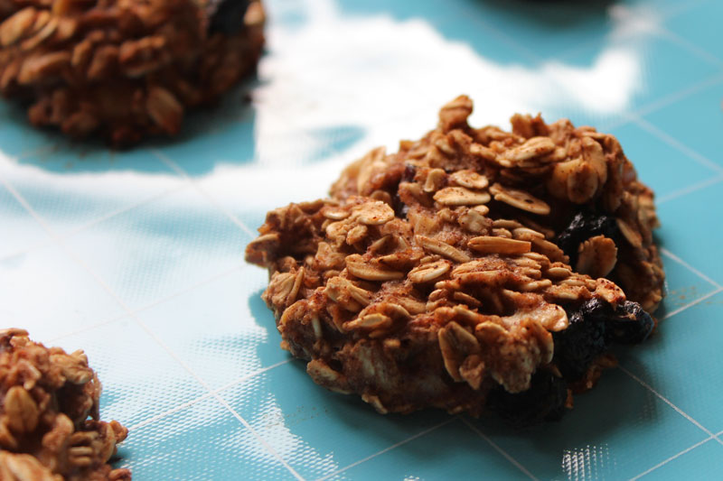 Lori's Oatmeal Breakfast Cookies