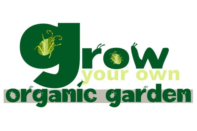 grow your own organic garden
