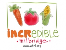 Incredible Edible Milbridge