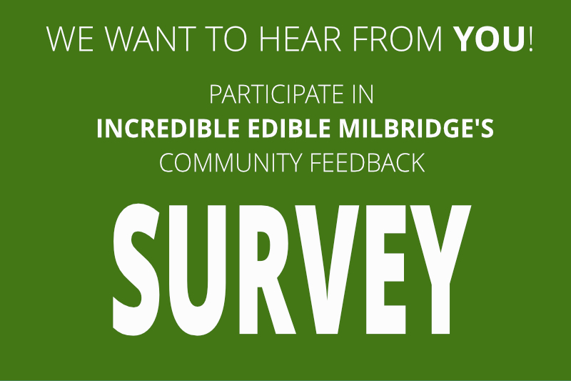 Incredible Edible Milbridge wants to hear from you! Take the IEM Community Survey.