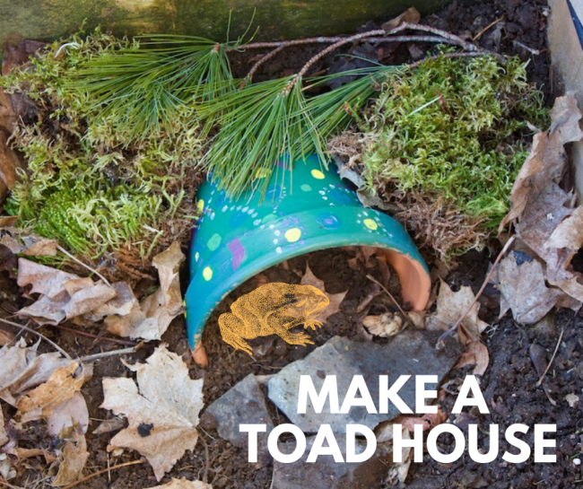 Decorated Toad House