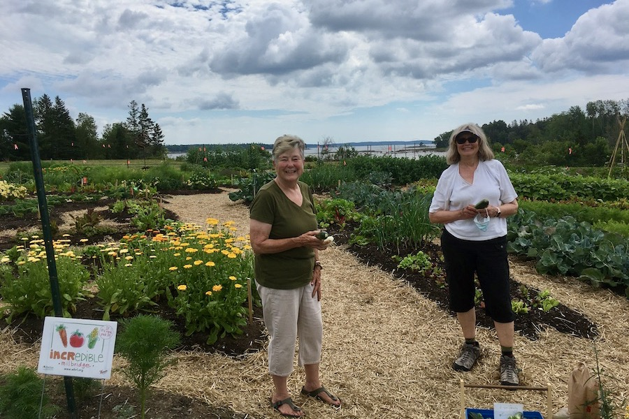 Maine Community Foundation Donates $10,000 to Incredible Edible Milbridge
